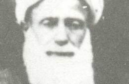 Alvarli Muhammed Lütfi (Efe Hz.)